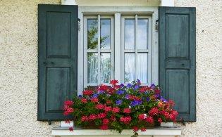 window replacement ridgewood, roofing ridgewood